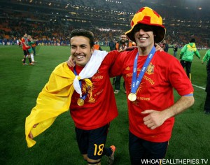 pa-photos_t_world-cup-final-holland-spain-photos-1207ah.jpg
